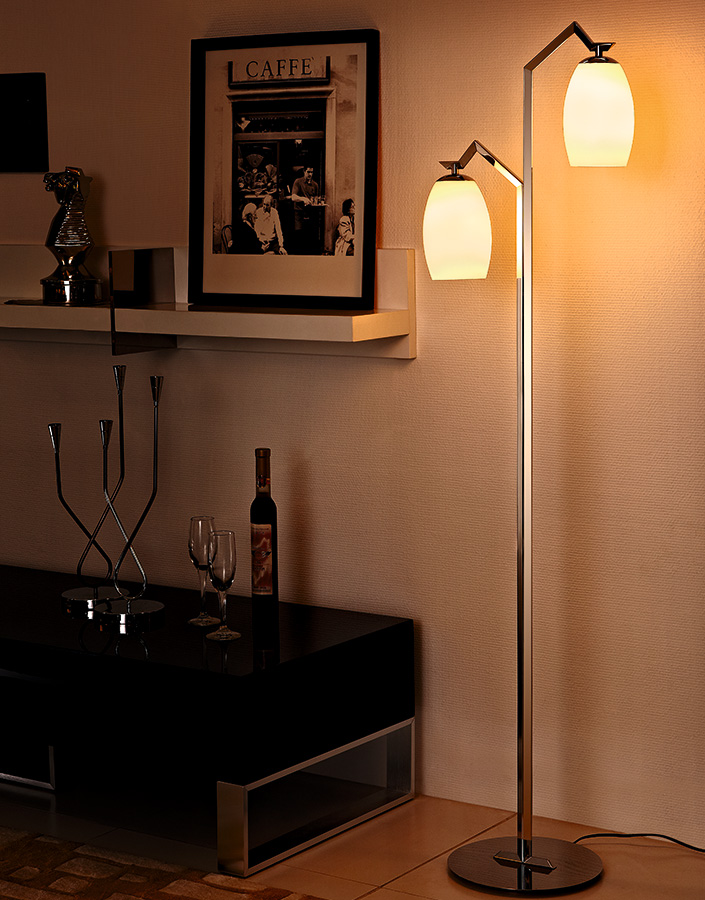 Power Outlet Stainless Steel Polished Glass Lampshade Modern Floor Lamp